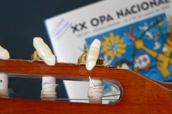 Musica 09 - Foto Oscar Lepikson
